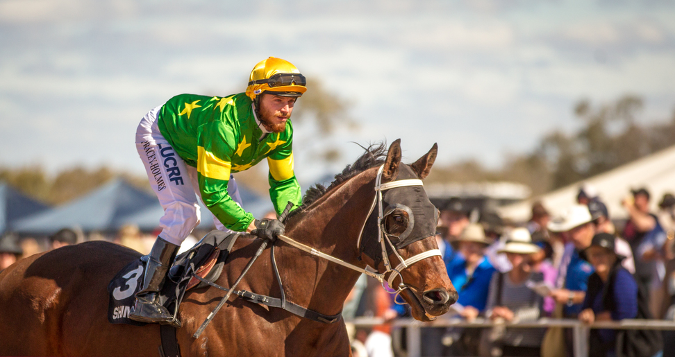 Trainer Advises To 'Forget The Form' At Cowra - Racing New South Wales